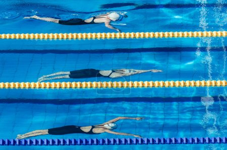 swimmers sportswomen at competition