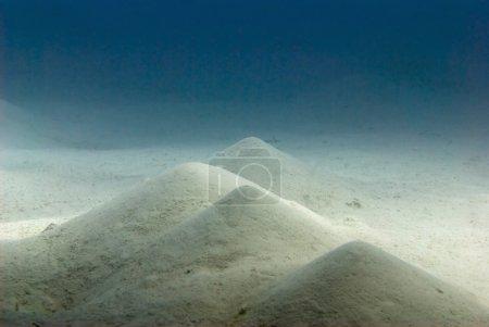 Sandy bottom seascape