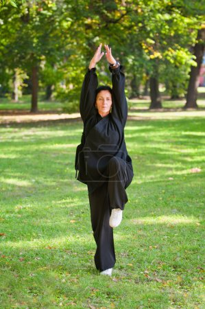 Woman doing Tai Chi in park