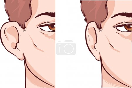 Illustration for Vector illustration of a cartoon kid and body parts - Royalty Free Image