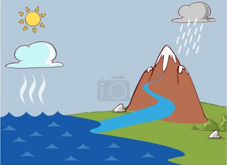 Vector illustration of a The water cycle...