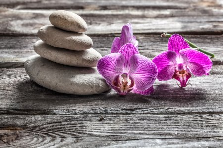 delicate pink orchids and pebbles on old texture gray wood