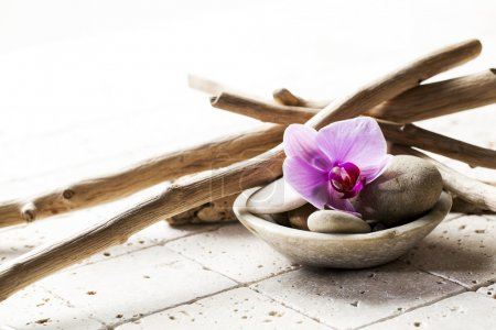 small pebbles and soft wood with orchid for beauty decor