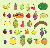 Tropical fruits Hand drawn collection