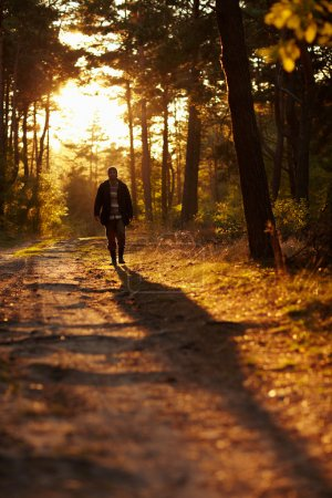 Photo for Early morning shot of a young man walking through woodland - Royalty Free Image