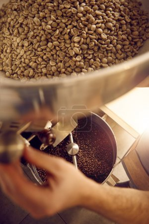 male hand of coffee beans roaster