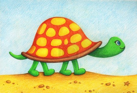 Petite jolie tortue