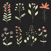 Big floral Set of Hand drawn flowers on dark background made in Vector Herbarium Set Beautiful design elements for Wedding Invitations Romantic Templates Birthday Cards Postcards Patterns