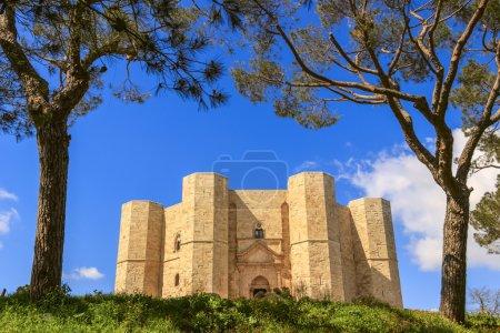 Stones of Apulia.Castel del Monte: the main facade.-ITALY(Andria)-