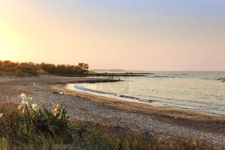Summer seascape:the most beautiful sandy beaches of Apulia. A nature reserve of Torre Guaceto. Mediterranean maquis: a nature sanctuary between the land and the sea. ITALY(Brindisi).