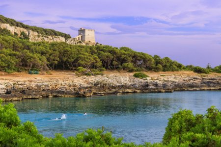 Salento coast. Bay Porto Selvaggio:in the background Dell'Alto watchtower.ITALY (Apulia).
