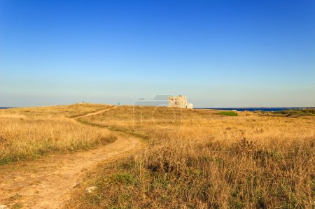 Summer landscape: a nature reserve of Torre Guaceto.BRINDISI (Apulia) -ITALY- Race to the watchtower. Mediterranean maquis: a nature sanctuary between the land and the sea.