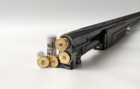 Photo for Cartridges 12 gauge lying on a light background in close up view side. - Royalty Free Image
