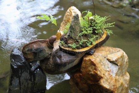 sculpture of turtle on stones in water