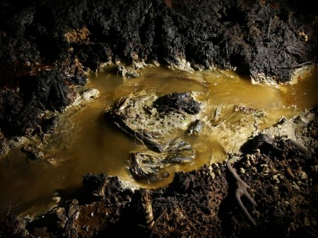 Carcinogenic crude oil pollution produced by illegal oil mining contaminates soil and water in East Java, Indonesia