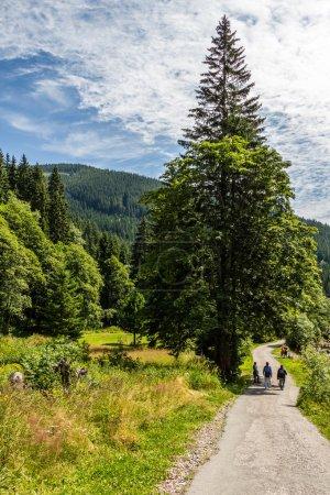 National park Krkonose