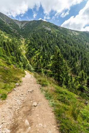 Mountain path in the national park Krkonose