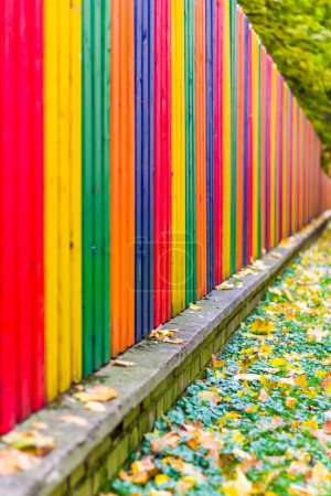 Multi colored rainbow wooden fence in autumn