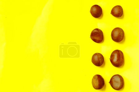 Chestnuts pattern on yellow background top view chestnut