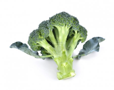 Photo for Broccoli isolated on white background - Royalty Free Image