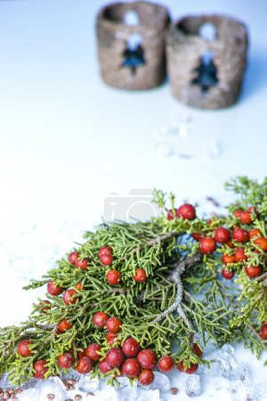 Christmas juniper with berries on chrystal ice