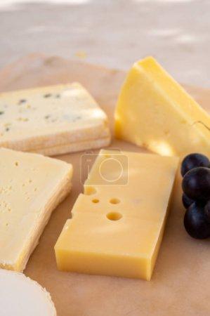 Photo pour Collection de fromages français sur marbre, emmental, carre de aurillac, petit cantal AOP Jeune, buche chevre et brie - image libre de droit