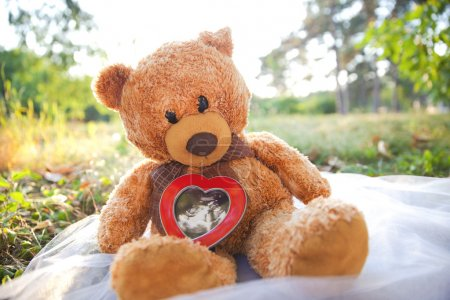 Photo for Teddy bear and baby ultrasound picture - Royalty Free Image