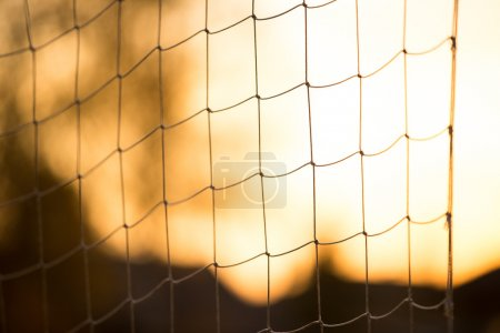soccer or volleyball net