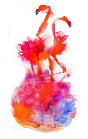 watercolor illustration of flamingos