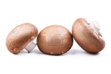 Photo for Three brown champignon mushrooms isolated on white background.  Close up macro shot - Royalty Free Image