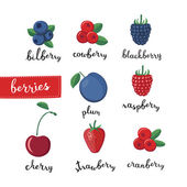 Different kinds of berries  and lettering name