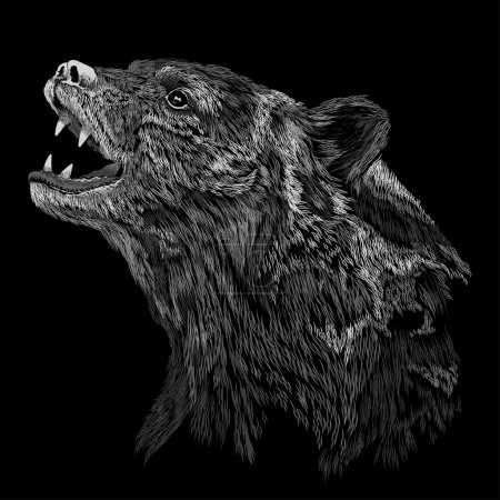 Illustration for Head of BEAR VECTOR ILLUSTRATION. t-shirt graphics for use - Royalty Free Image