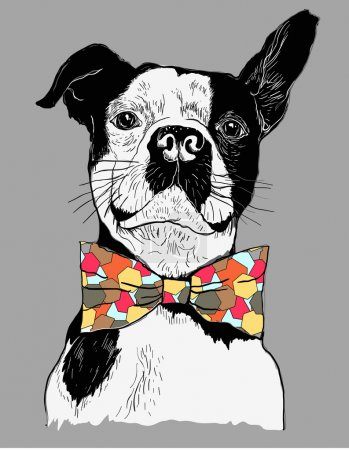 Illustration for Hand Drawn Vector Portrait of French Bulldog in colorful Tie Bow - Royalty Free Image