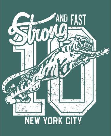 College New York typography