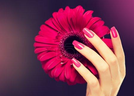 Female pink manicure