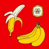 Collection of bananas icon Banana set Banana design Banana texture Banana fresh Banana cartoon Banana color Banana illustration Banana vector Banana poster Banana background Banana fruit