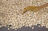 Nutrition sunflower seeds hulling