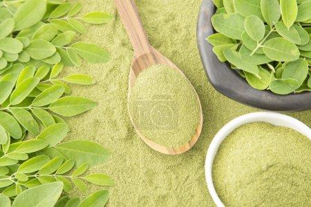 Photo pour Moringa (Moringa Oleifera) a une teneur élevée en protéines, vitamines, minéraux et une quantité exceptionnelle d'antioxydants qui donnent des qualités exceptionnelles dans la nutrition humaine et santé - image libre de droit
