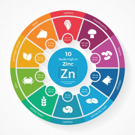 10 foods high in Zinc. Nutrition infographics.