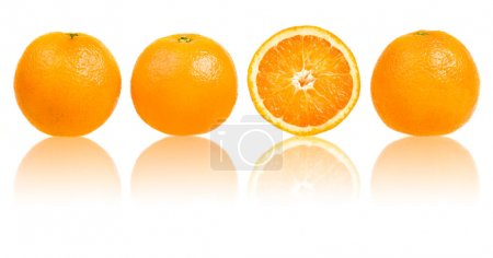 Photo for Orange slice composition set in line isolated on white - Royalty Free Image