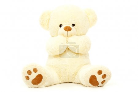 white teddy bear isolated on white