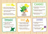 Home remedies infographics Natural healers natural self made cures Self help recipes with fruits and herbals