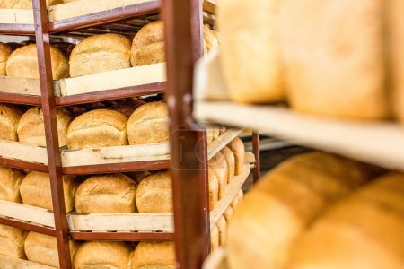 Freshly baked bread stacked and ready for packaging at factory