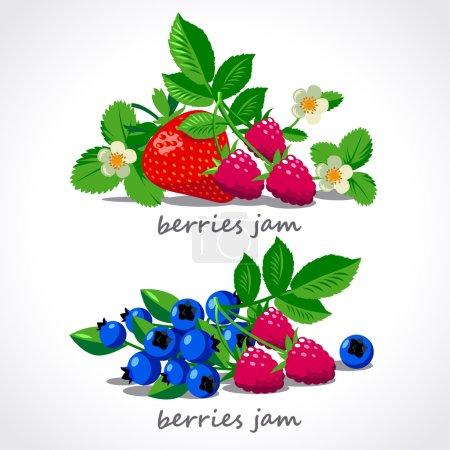 Berries and flowers vector set