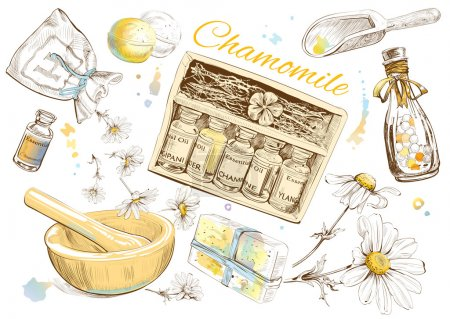 Illustration for Chamomile natural cosmetic set. Vector illustration - Royalty Free Image