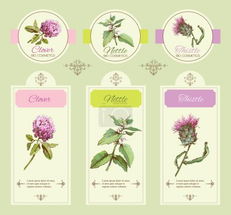 Illustration for Vector vintage banners with wild flowers and medicinal herbs. Design for cosmetics, store, beauty salon, natural , organic health care products. - Royalty Free Image