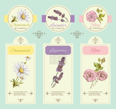 Illustration for Vector vintage template banner with wild flowers and medicinal herbs. Design for cosmetics, store, beauty salon, natural and organic, health care products. - Royalty Free Image