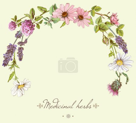 Illustration for Vector vintage hand-drawn frame with wild flowers and herbs. Layout design for cosmetics, store, beauty salon, natural and organic products. Can be used like as - Royalty Free Image