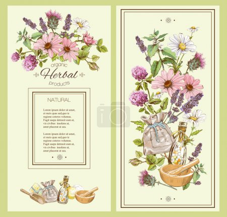 Illustration for Vector vintage hand-drawn banner with wild flowers and herbs. Design for cosmetics, store, beauty salon, natural and organic products. Can be used like a greeting card. With place for text - Royalty Free Image