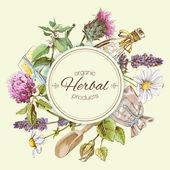 Herbal vintage banner